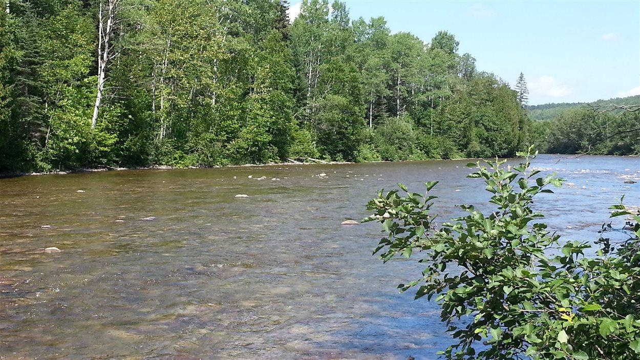Les possibles forages seront près de la rivière Mitis.