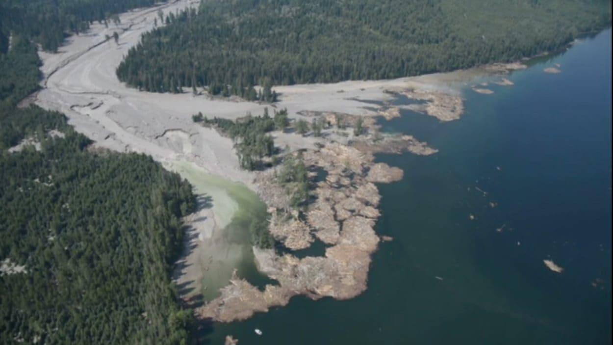Les débris à l'embouchure du ruisseau Hazeltine sur le lac Polley.