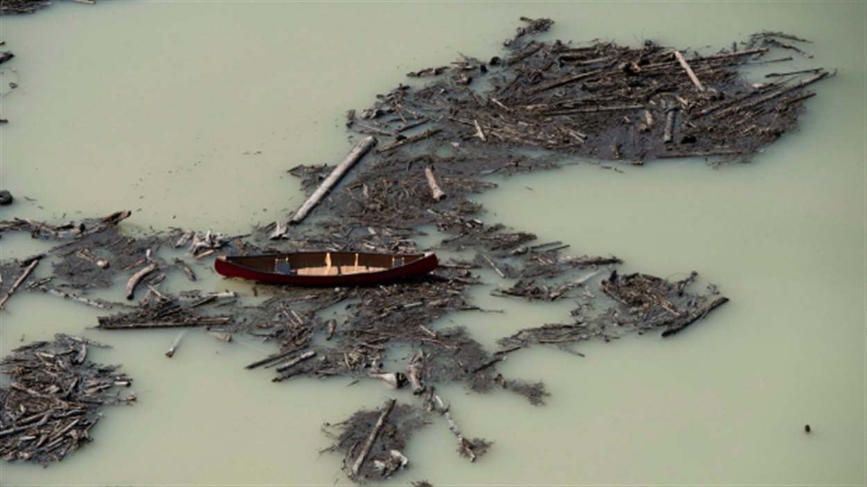 Des débris entraînés par le déversement de la mine du mont Polley se retrouvent dans le lac Polley, en Colombie-Britannique.