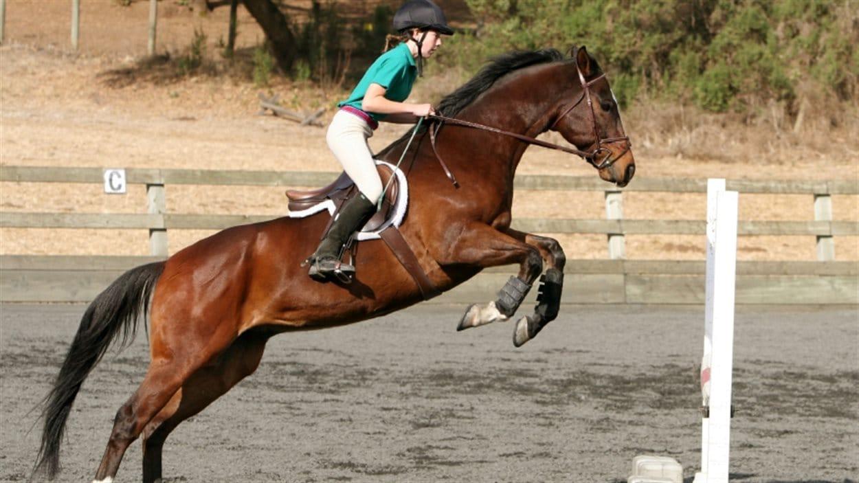 Les Jeux équestres mondiaux 2014