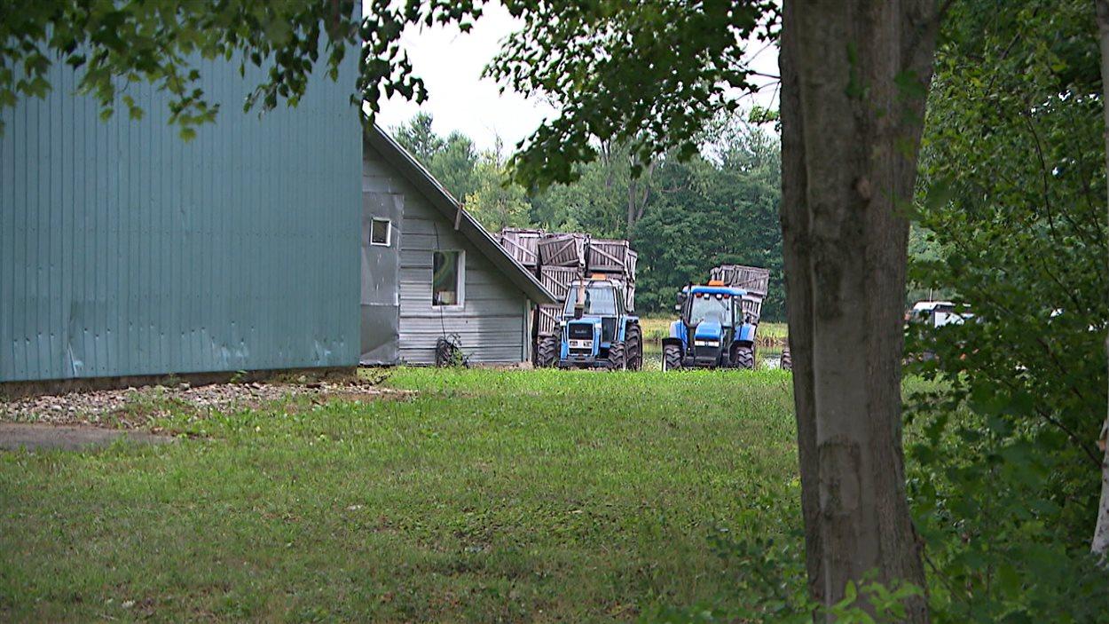 Tracteurs sur une ferme