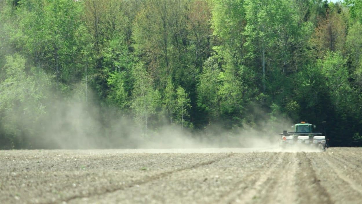 Épandage d'insecticide dans un champ