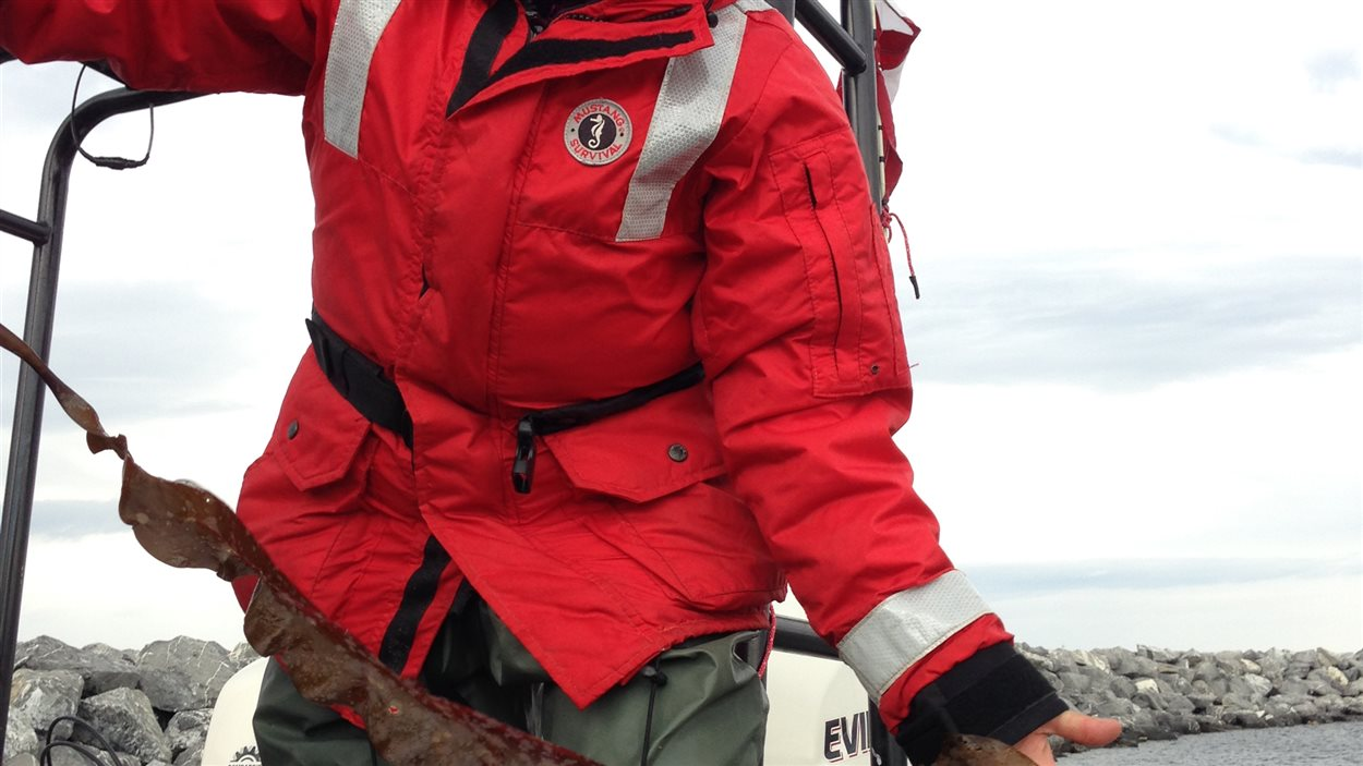 La chercheuse Nathalie Simard