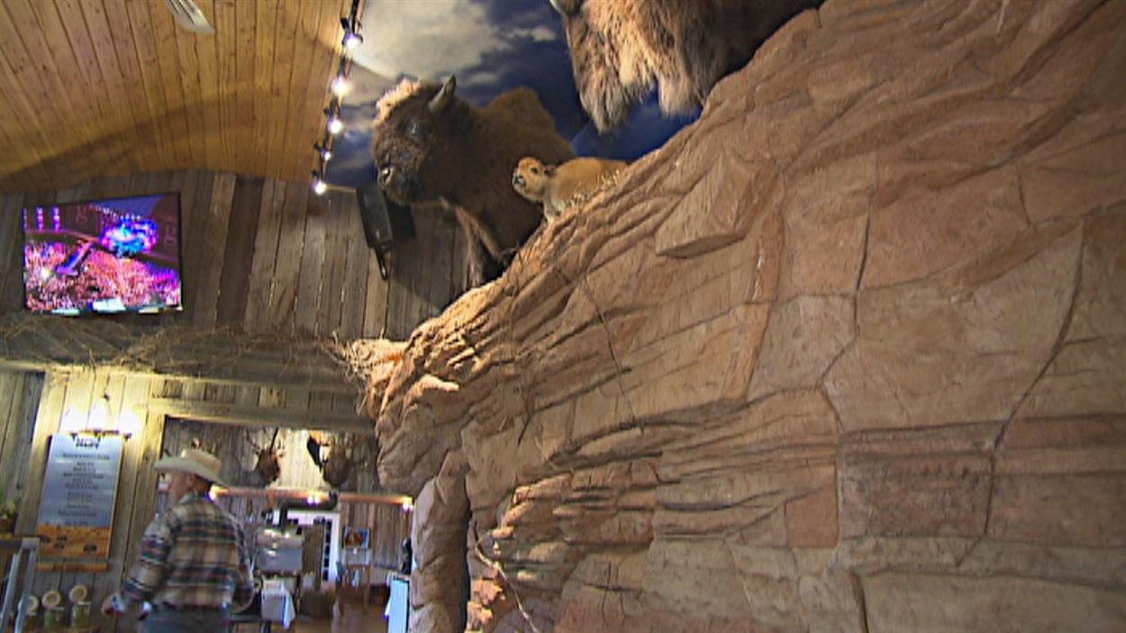 La falaise créée par Art Ciment Décoration à la ferme La Bisonnière