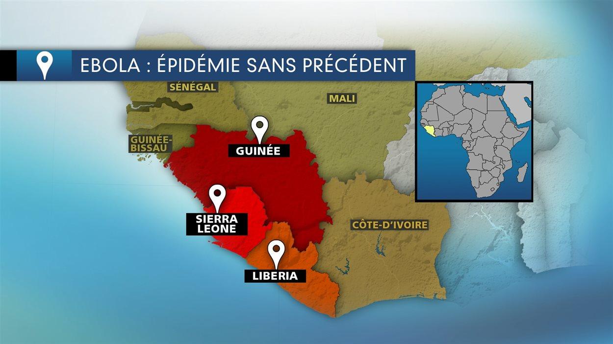 Les pays africains frappés par le virus d'Ébola.
