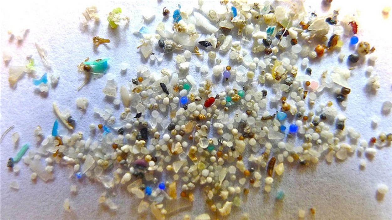 Des microbilles de plastiques
