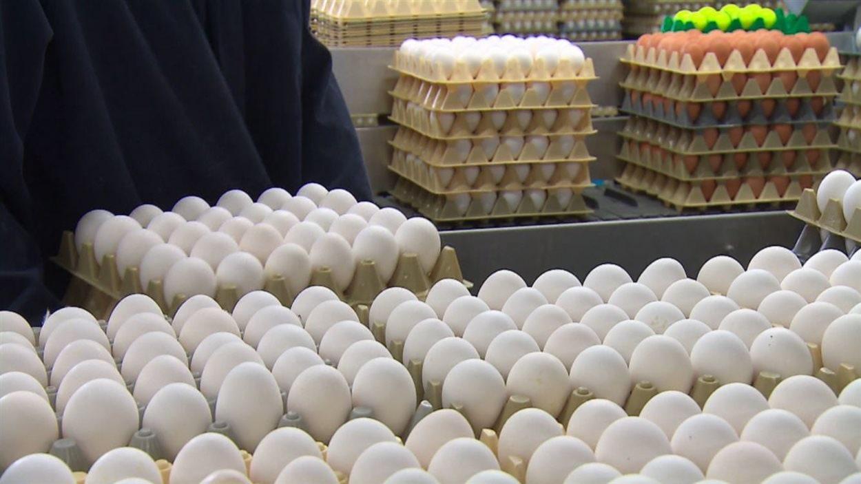 Les producteurs d'oeufs soumis à la gestion de l'offre