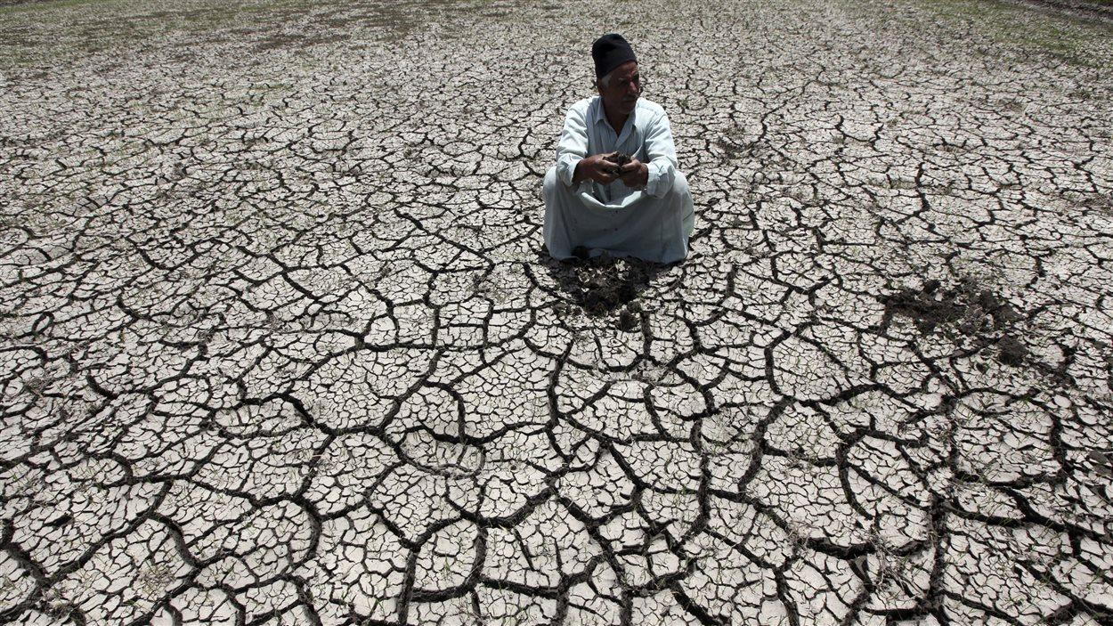 Un fermier égyptien est touché par la sécheresse.