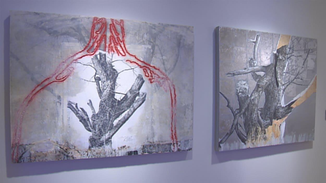 En 1975, Bill Vincent entreprend sa carrière en arts visuels à Québec