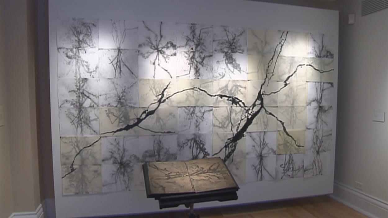 Bill Vincent a créé plusieurs œuvres dans le cadre de l'intégration des arts en architecture