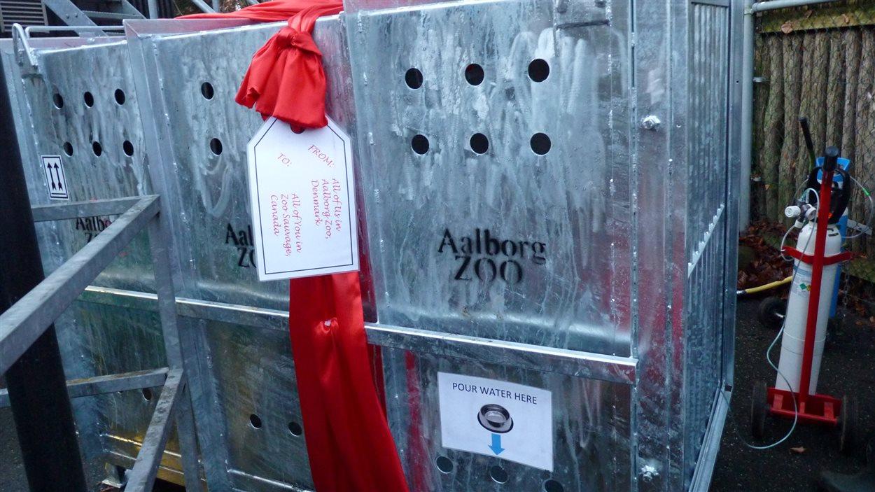 L'équipe du zoo d'Aalborg a eu la délicate attention « d'emballer » la cage et de mettre une carte cadeau.
