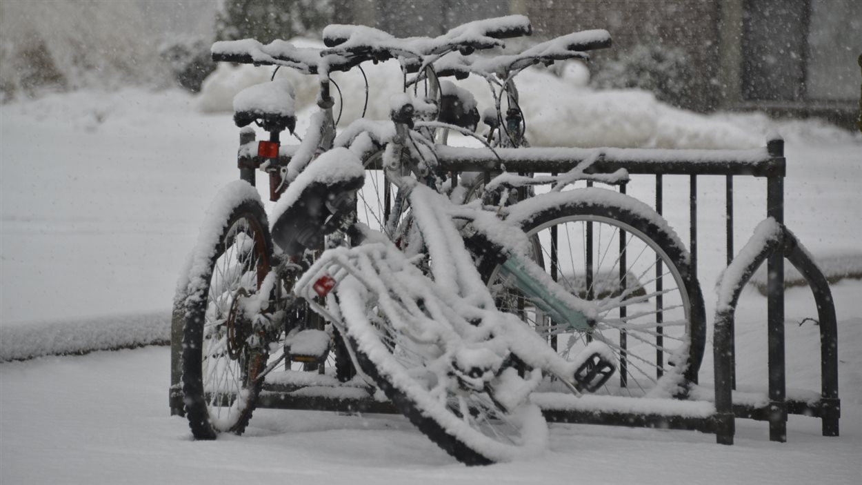 Des vélos enneigés stationnés