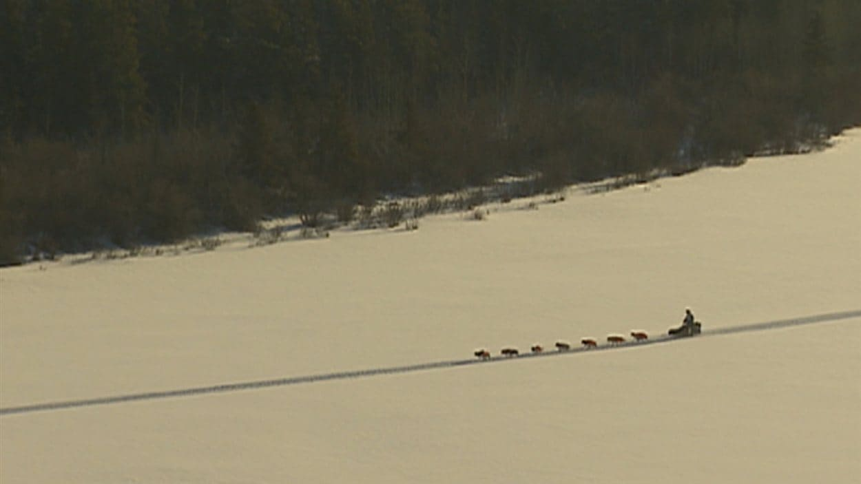 Un traîneau dans la neige au Yukon Quest 2015