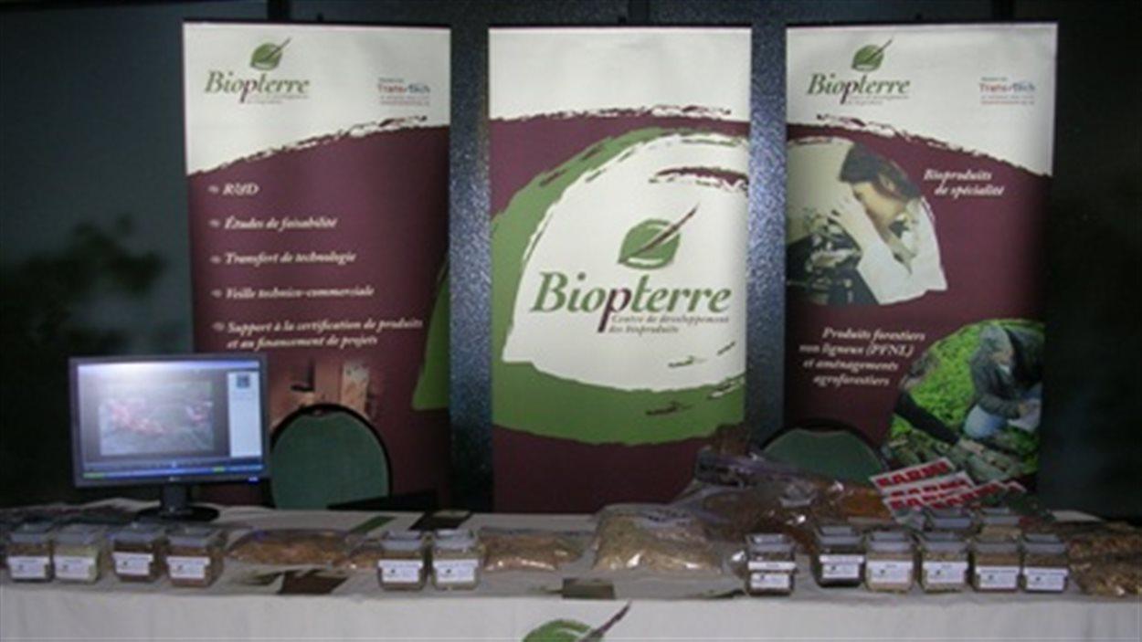 Biopterre: libérer le potentiel des plantes