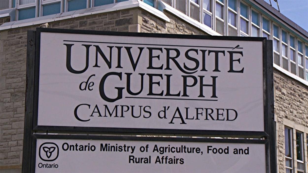 Le Collège d'Alfred dans l'Est ontarien.