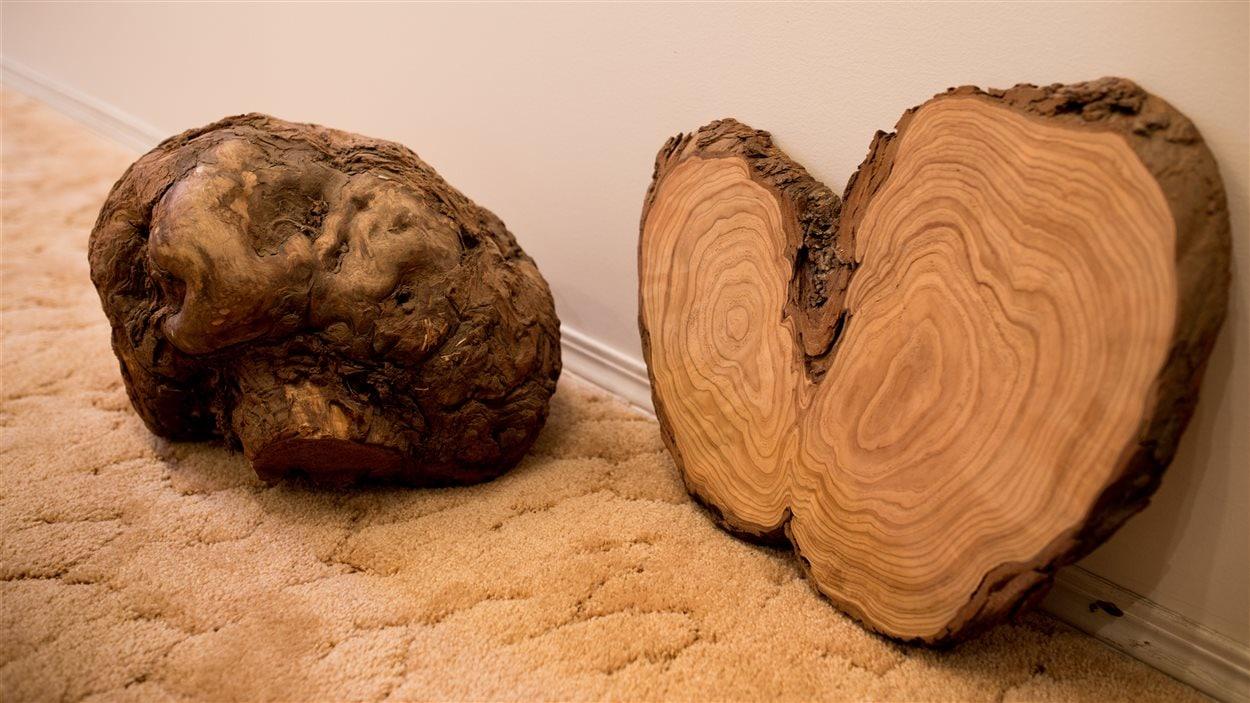 Maurille Hammond utilise ce genre de tranche pour faire certaines de ses oeuvres. Il se laisse inspirer par la forme qu'elles ont pour décider ce qu'il y sculptera.