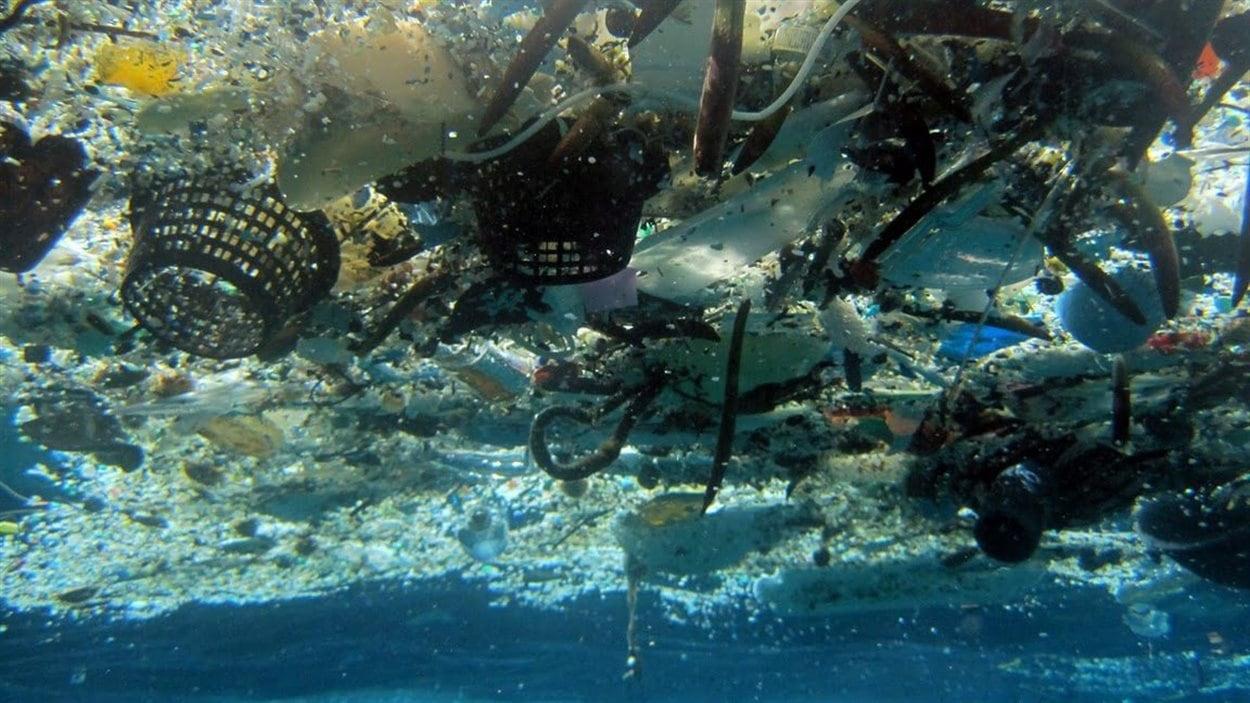 Des déchets de plastique à Hanauma Bay, Hawaii.