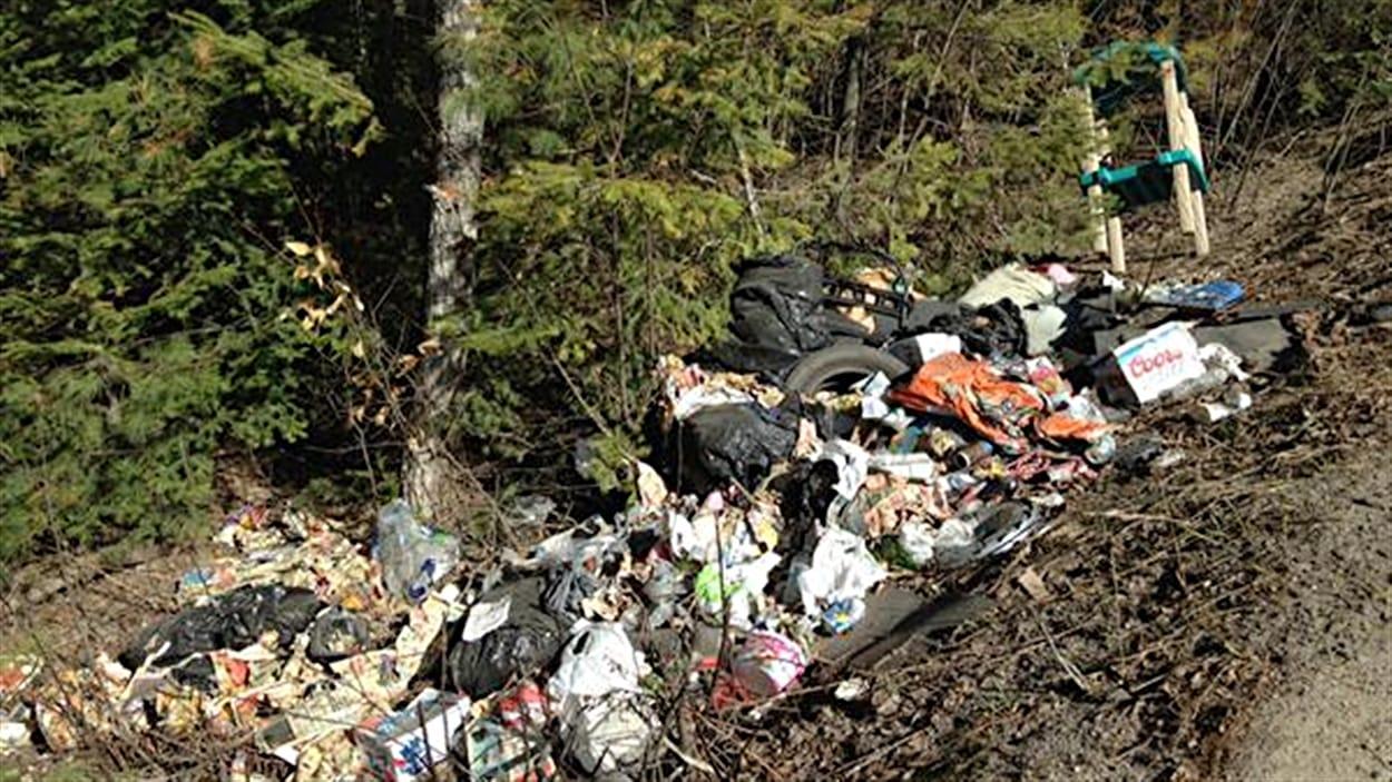 Un pollueur a laissé un amas de déchets en bordure d'un chemin dans le parc de la Gatineau.