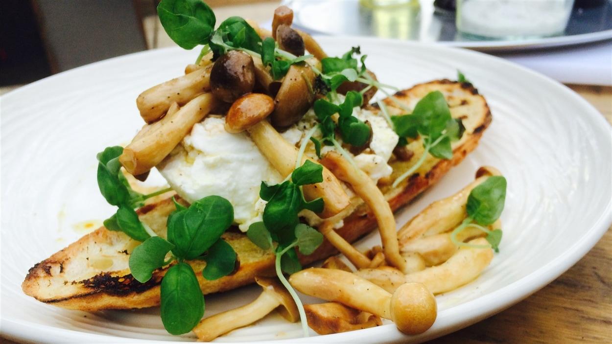 Ricotta au lait de bufflonne sur tartine grillée, champignons marinés au soya