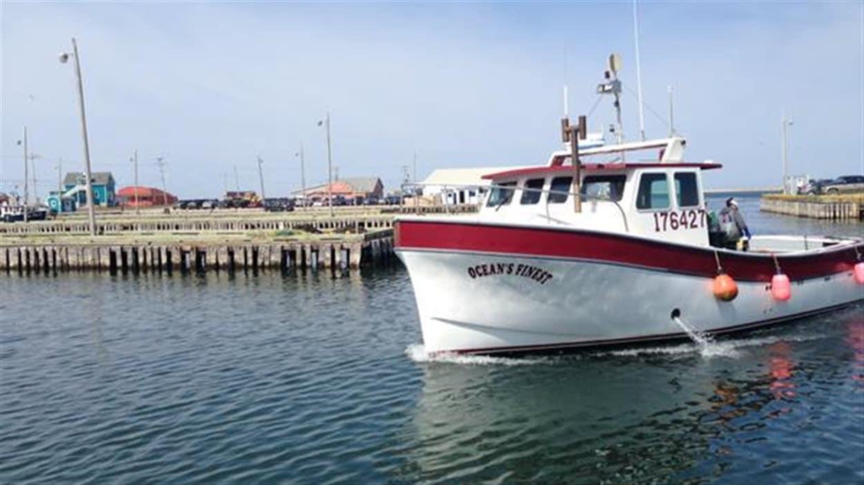 Les premiers bateaux rentrent au port de Grande-Entrée pour décharger du homard