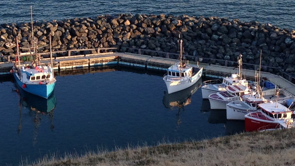 Le port de Cap-aux-Meules aux Îles-de-la-Madeleine.