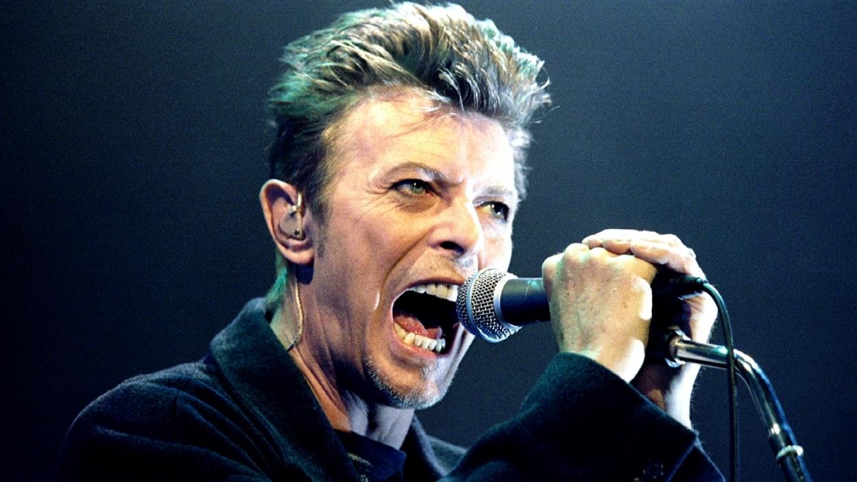 L'artiste David Bowie en 1996