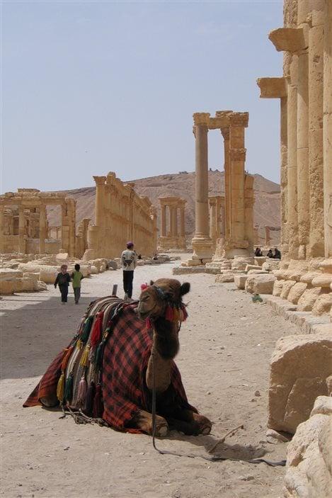 Grande colonnade à Palmyre, en Syrie