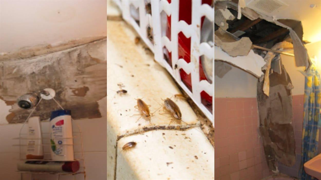 À défaut de pouvoir y entrer, des photos de l'intérieur des appartements ont été présentées pendant la visite guidée.