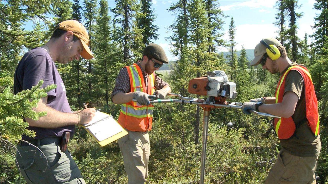 Deux chercheurs enfoncent une foreuse dans la forêt pendant que Fabrice Calmels prend des notes