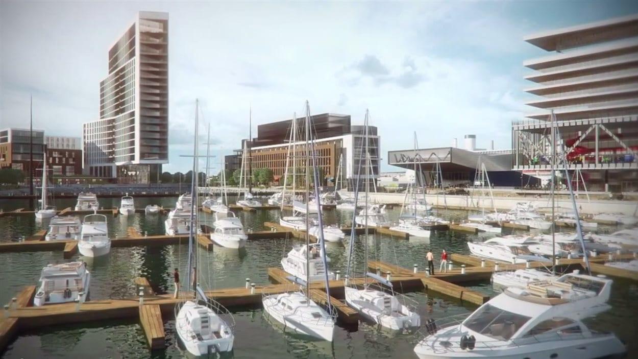 Le Port souhaite développer le secteur entourant le bassin Louise.