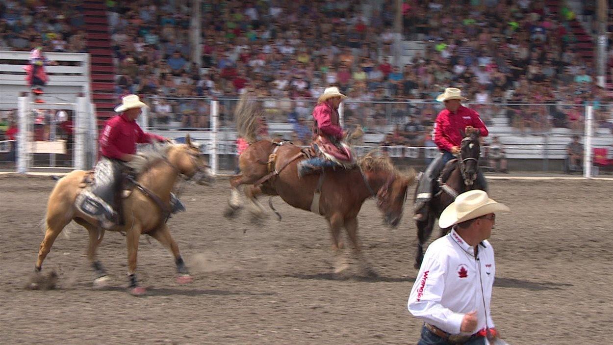 Un cheval tente d'éjecter le cowboy qui le monte lors que Stampede du Manitoba à Morris.