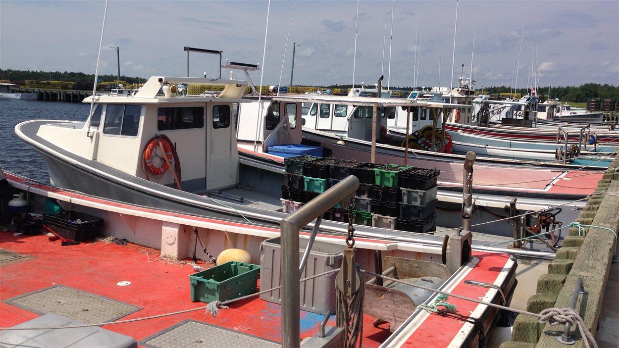 Des bateaux de pêche au homard.