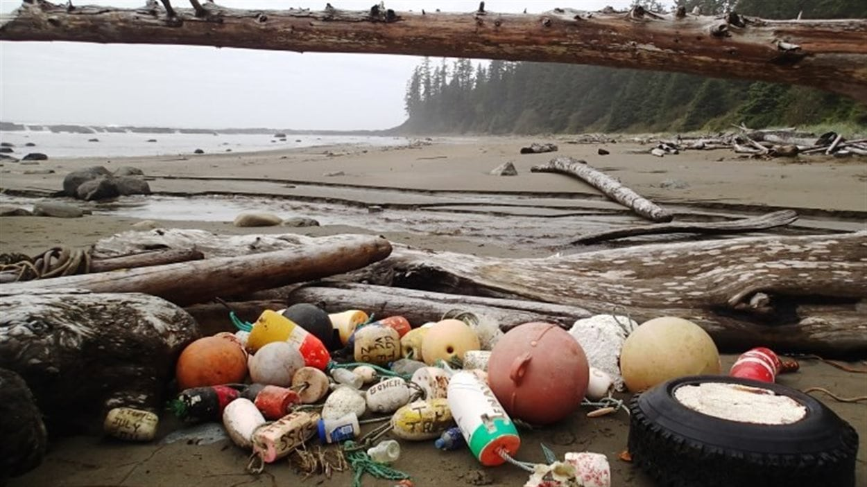 Des milliers de tonnes de débris dérivant depuis le tsunami de 2011 au Japon jonchent les côtes de lÎle de Vancouver. bouées, pneus divers sur la plage, avec inscriptions japonaises.