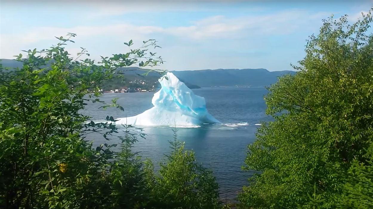 Un iceberg près de King's Point à Terre-Neuve-et-Labrador.