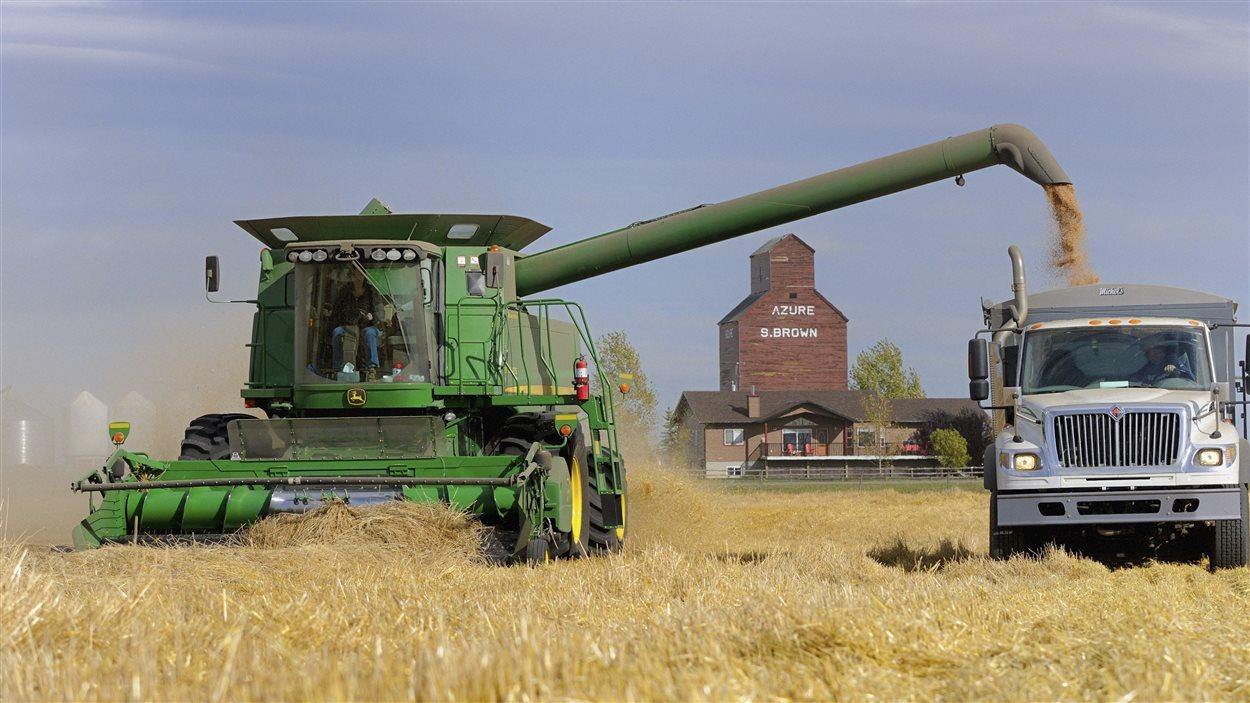 Les travailleurs agricoles albertains font face à de nombreux risques en opérant de la machinerie lourde et en utilisant des produits chimiques, entre autres.