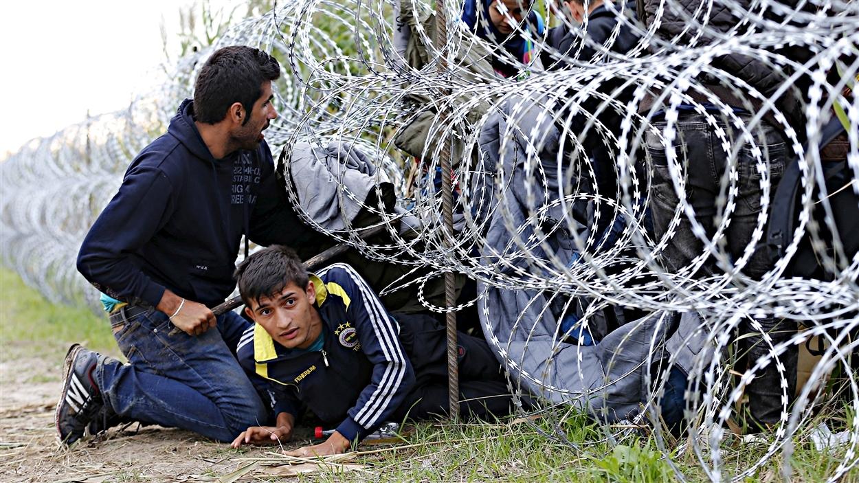 Des migrants passent en Hongrie depuis la frontière serbe