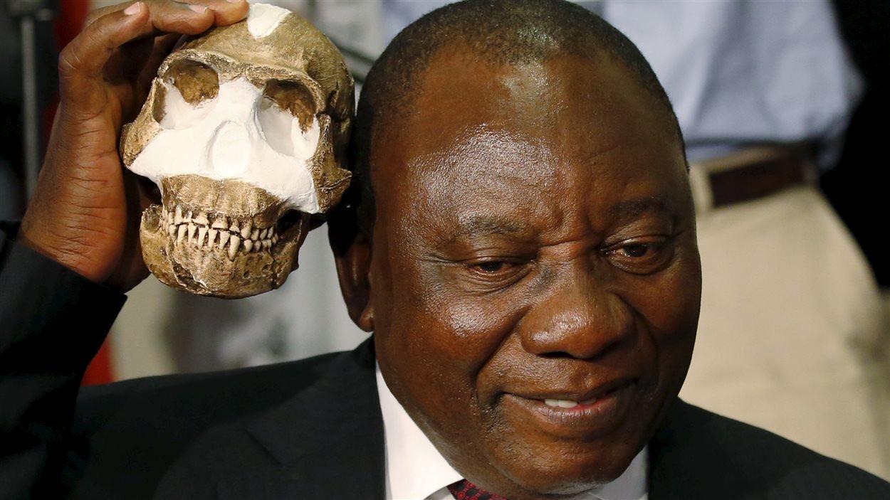 Le vice-président sud-africain Cyril Ramaphosa tient une réplique du crâne de l'Homo naledi.