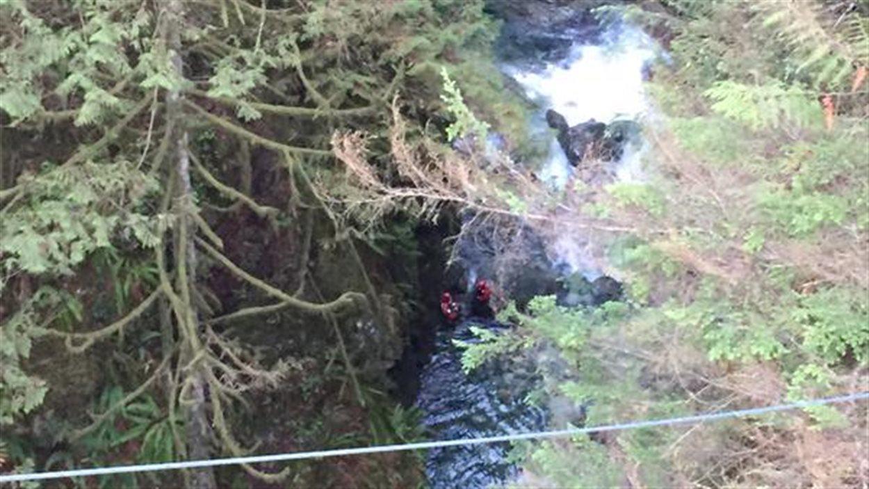 Un homme a perdu la vie lors d'une noyade dans le parc Lynn Canyon.