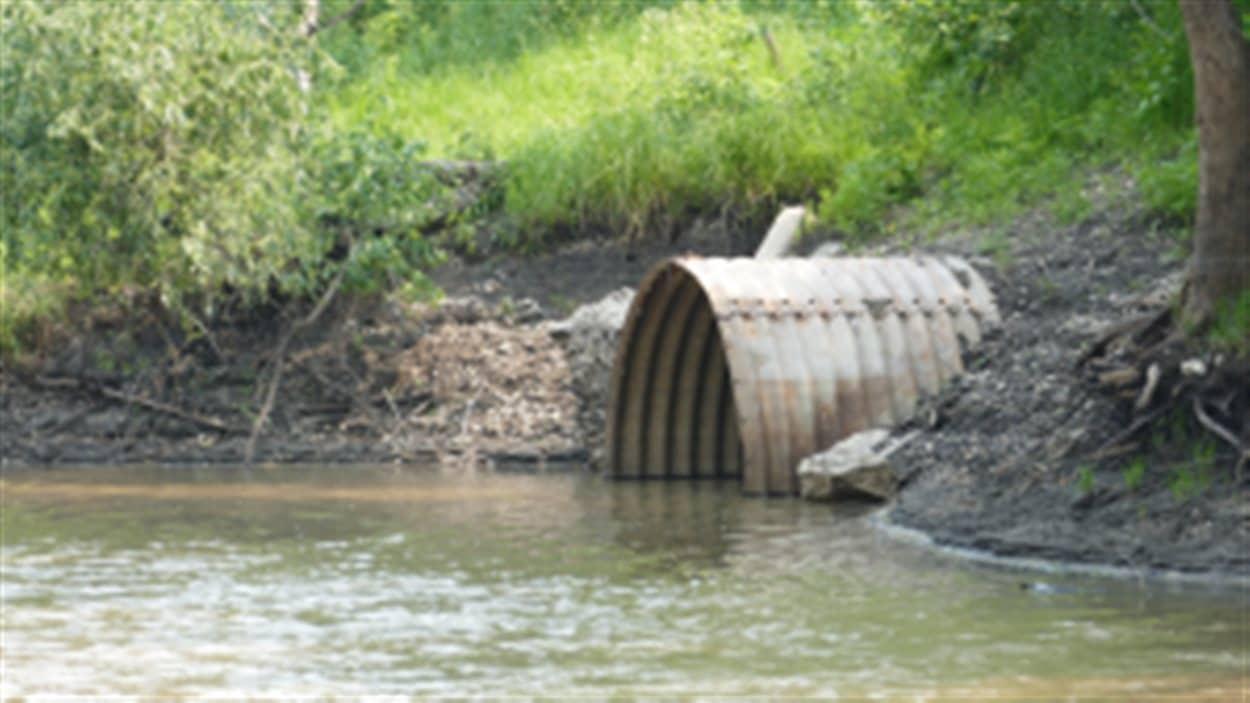 Le point de rejet situé à la confluence de la rivière Seine et de la rivière Rouge à Saint-Boniface a déjà rejetté 6,1 milliards de litres d'eaux usées en raison de failles dans le système d'égoûts.