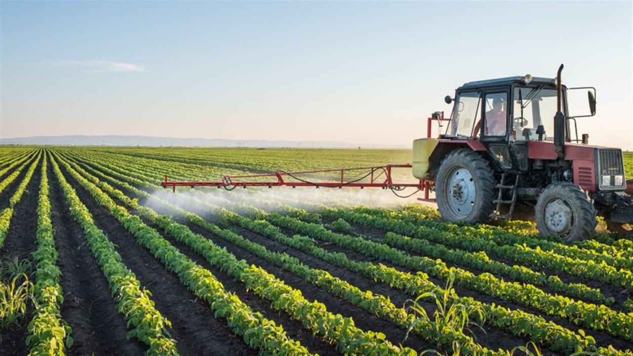 Un agriculteur épand un pesticide sur son champ