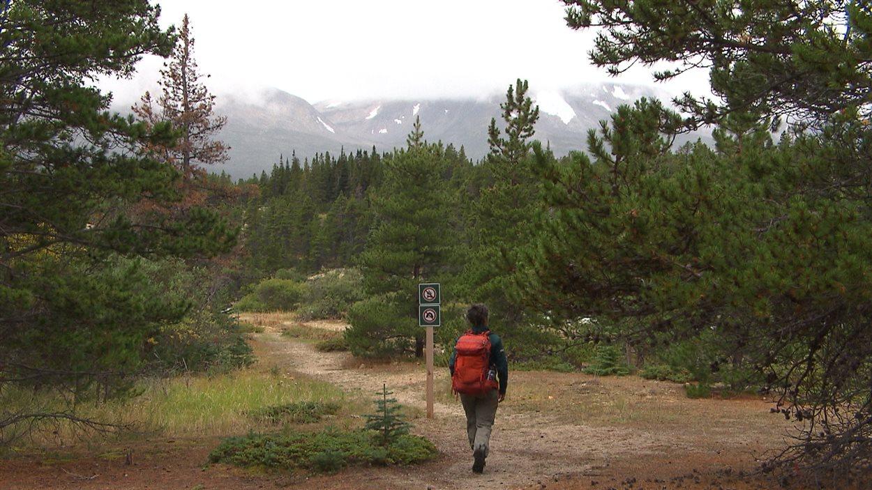Sentier de la piste Chilkoot