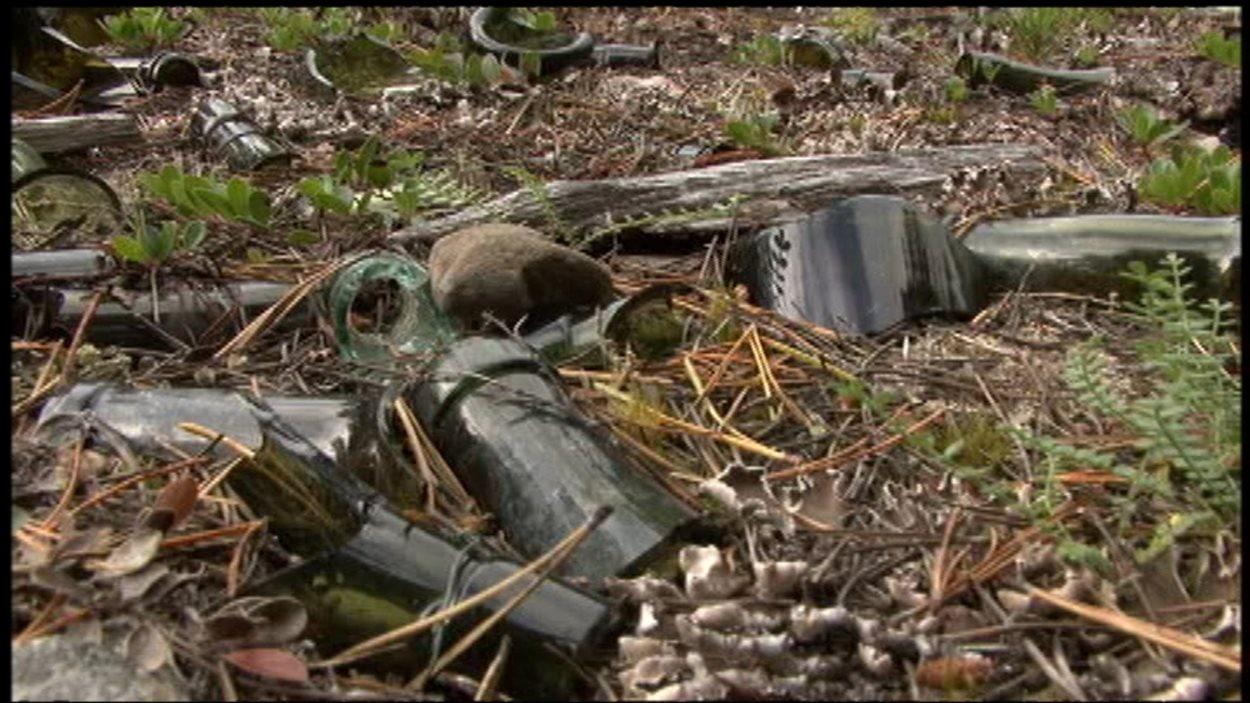 Des bouteilles, des boîtes de conserve de métal sont autant d'artéfacts trouvés le long de la piste.