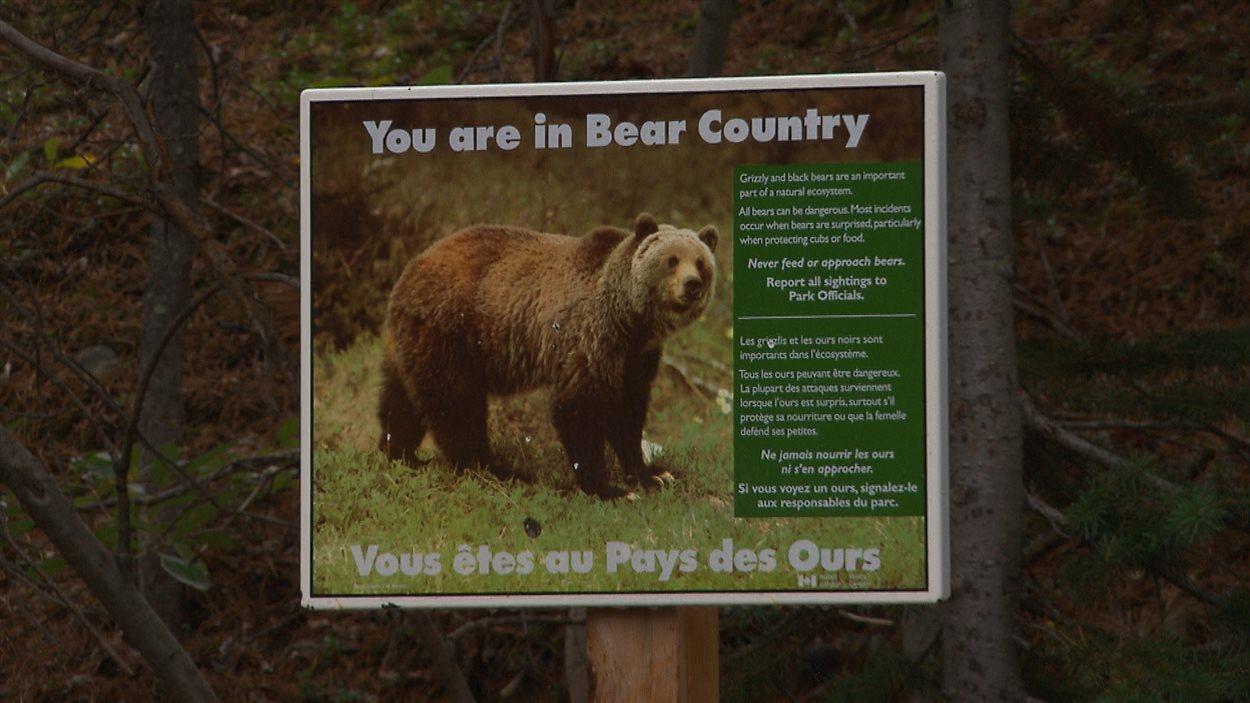 La signalisation entourant la sécurité des ours est très présente.