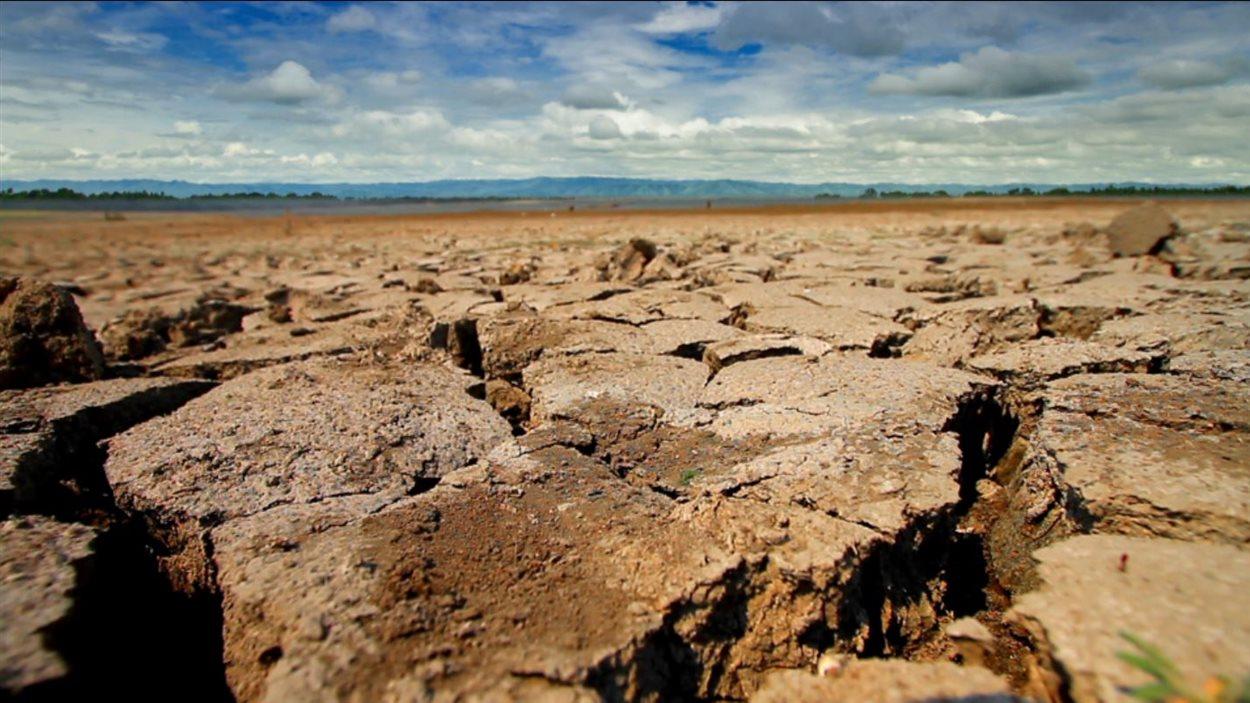 Paysage aride de la vallée centrale de la Californie