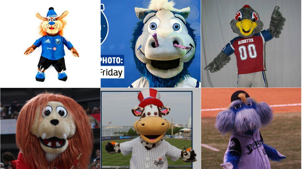 L'entreprise de Mascouche a notamment créé les mascottes de l'Impact de Montréal, des Colts d'Indianapolis, des Alouettes, des Sénateurs d'Ottawa, des Staten Island Yankees et des Rays de Tampa Bay.