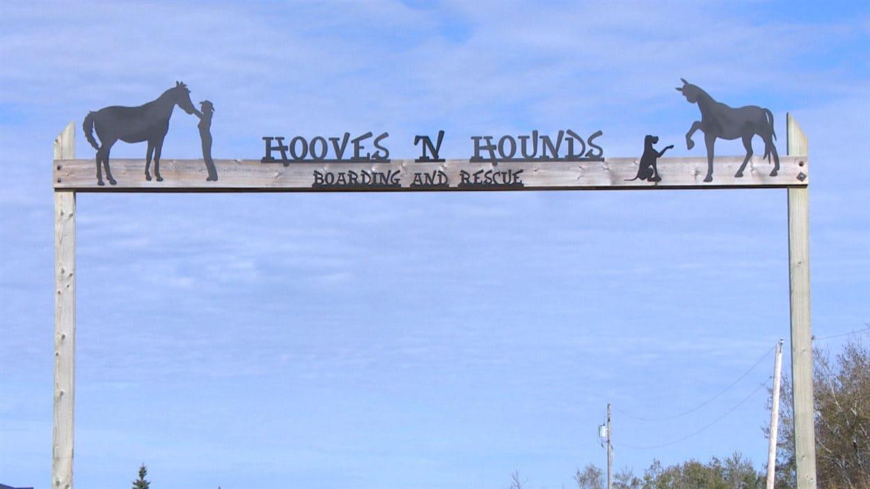 Entrée principale du refuge « Hooves & Hounds »