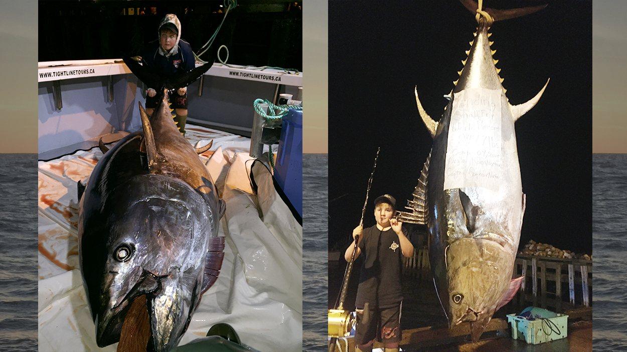Koen Norton, 10 ans, a pêché un thon rouge de 847,7 livres à l'Île-du-Prince-Édouard