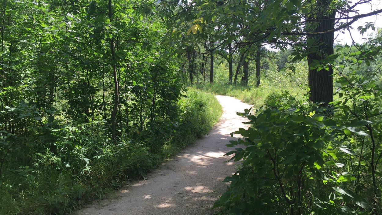 Sentier du Bois-des-esprits, à Winnipeg