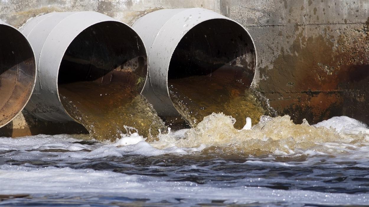 Un déversement d'eaux usées