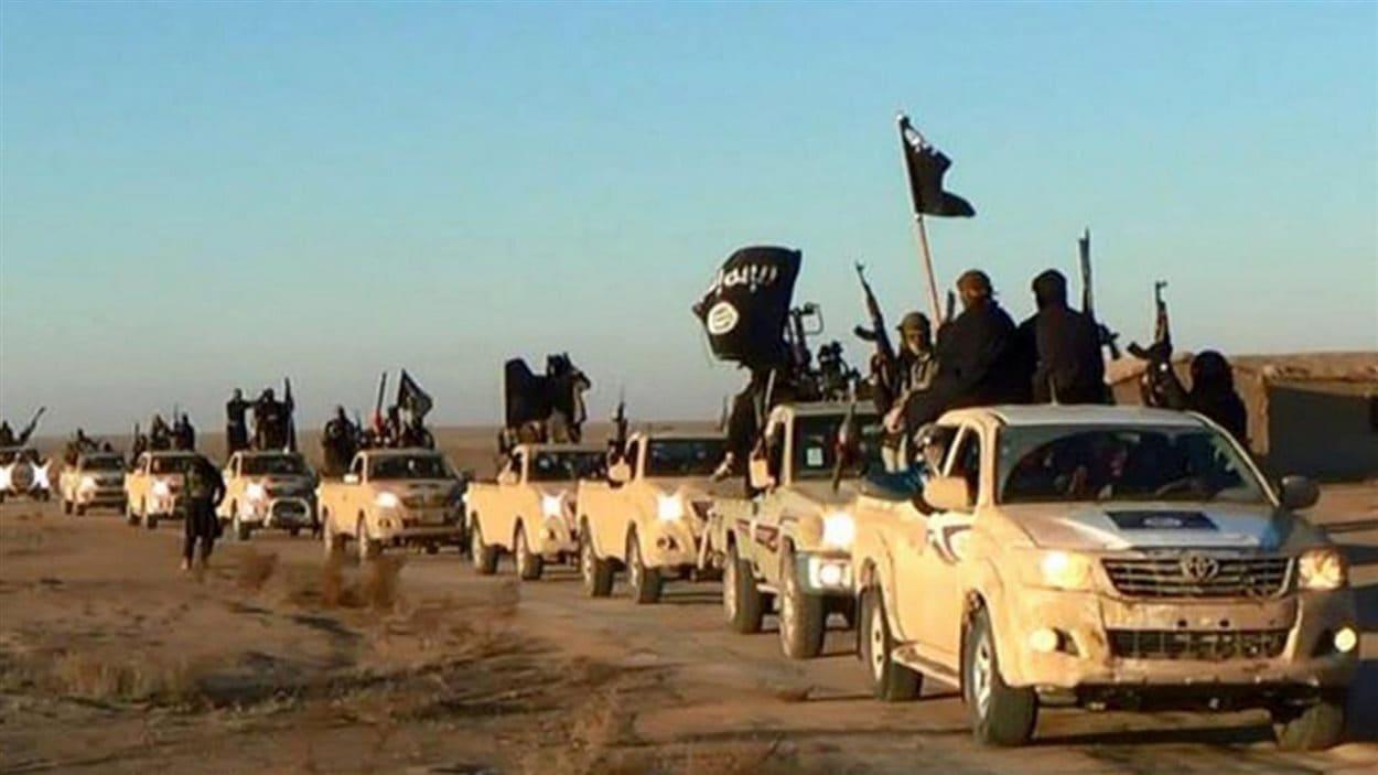 Des combattants de l'EI paradent dans des camionnettes Toyota.